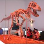 динозавр, когда-то обитал в пустыне Гоби